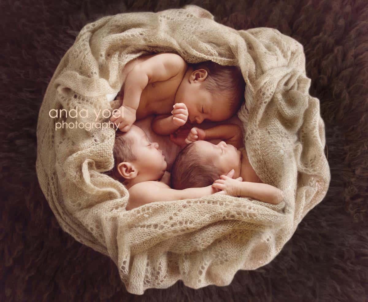 שלישיית תינוקות ניובורן בנות בסלסלה עגולה בעיטוף חום - מסדרת צילומי שלישיות אנדה יואל
