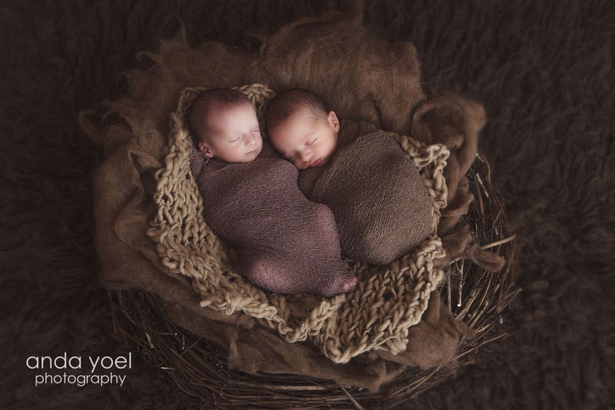 ניו בורן תאומים בנים על רקע סלסלה חומה - מסדרת צילומי ניובורן תאומים אנדה יואל