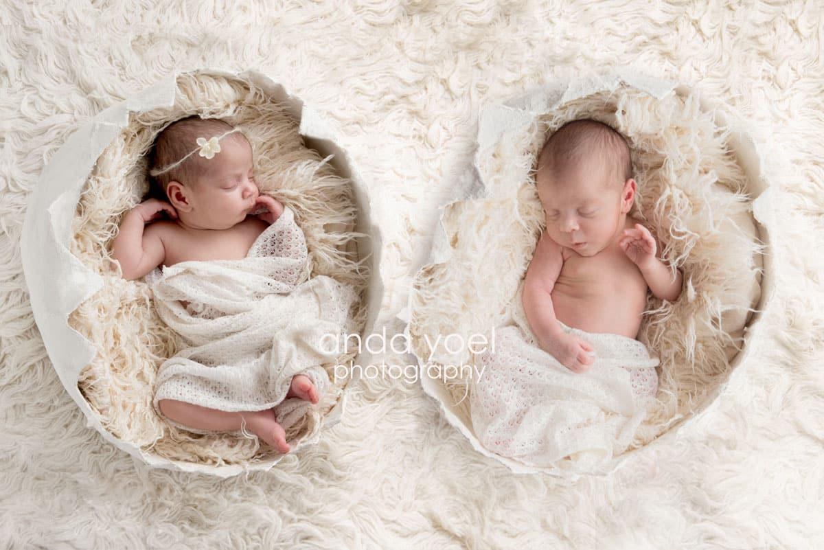 תינוקות ניו בורן תאומים כל אחד בקליפת ביצה - מסדרת צילומי תאומים ניובורן באור טבעי - אנדה יואל